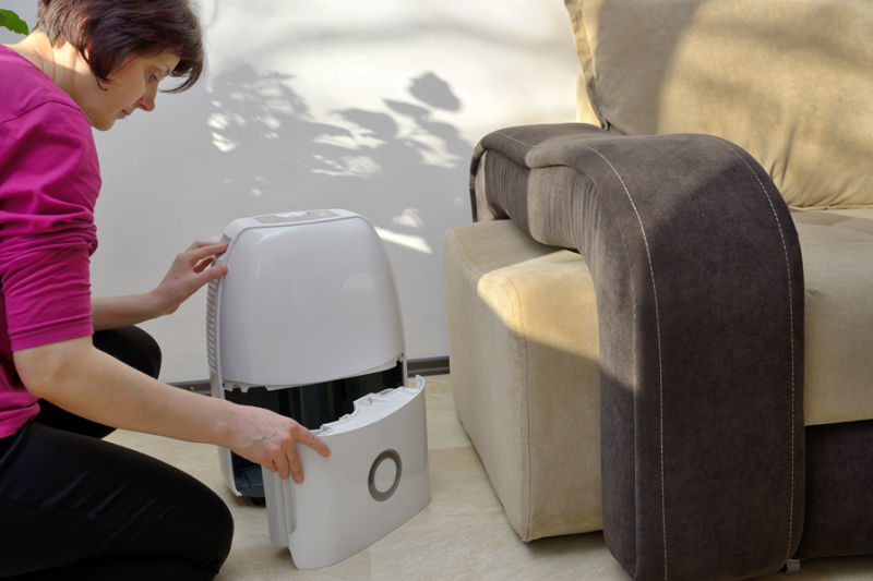 Portable dehumidifier collect water from air inside of living room